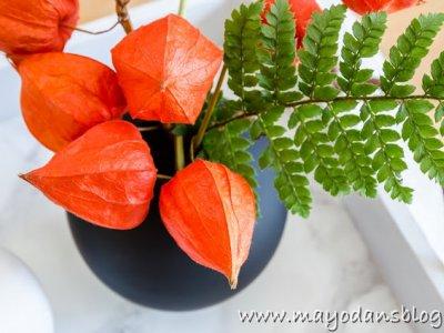Hyggelig wohnen im Herbst - Schöne Dekoideen für die gemütliche Jahreszeit
