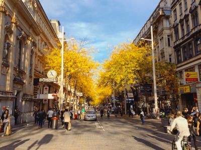 10 Dinge, die man im Oktober in Wien machen muss