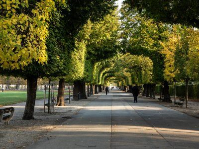 Unsere liebsten Locations für den Herbst in Wien