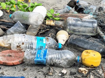 Nachhaltig Leben: EU verbietet Einweg-Plastik – Was bedeutet das?