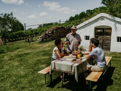 Die schönsten Wein-Orte in Niederösterreich