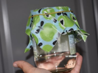 DIY – Bienenwachstücher selber machen