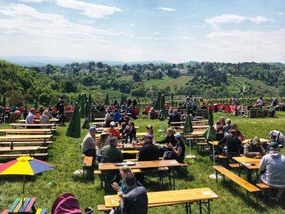 Unsere liebsten Buschenschenken in Wien