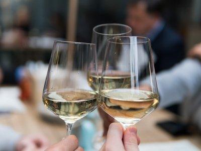Die perfekten Locations für Weinfans in Wien