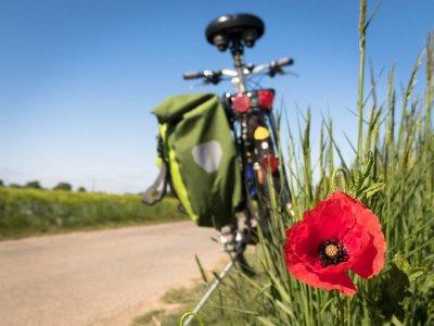 Unsere Tipps und Tricks für deine nächste Radtour