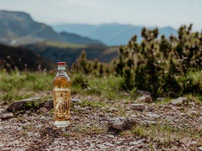 Wander-Knigge: Nachhaltige Tipps für eure nächste Bergtour