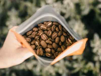 Die besten Wiener Adressen für Spezialitätenkaffee – Teil 1