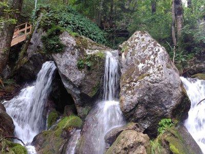 Herbstliche Ausflugstipps im Wienerwald