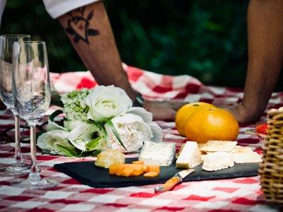 Picknickkörbe zum Mitnehmen in Wien