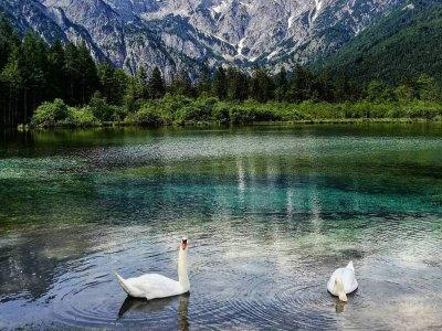 Die schönsten Seen in Österreich – Teil 2