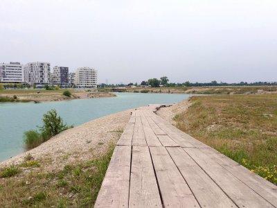 Wiener Teiche und Seen zum Spazierengehen