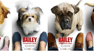 Bailey – Ein Hund kehrt zurück (2019) unsere Meinung zum Film