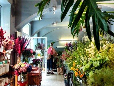 Wiens üppigste Blumenläden