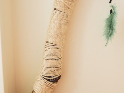 DIY Scratching Post for Cats