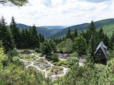 Urlaub in Oberhof