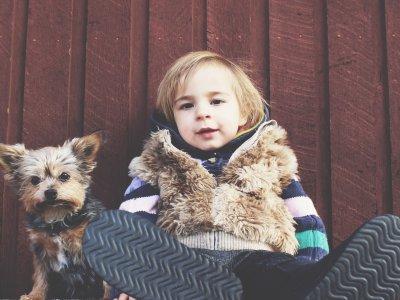 Unser Senf: Bin ich meinem Hund wirklich ähnlich?