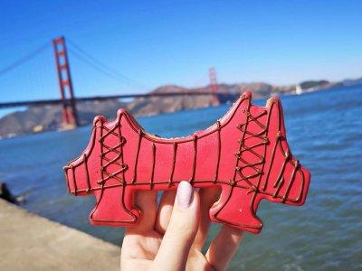 Nachhaltigkeit in San Francisco: 4ocean für plastikfreie Meere!