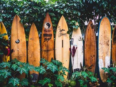 Surfen im Land der Berge – wo ihr in Österreich Wellen catchen könnt