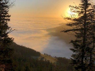5 Ausflüge, mit denen ihr der Wiener Nebelsuppe entkommt