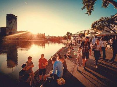 10 Dinge, die man im August in Wien machen muss