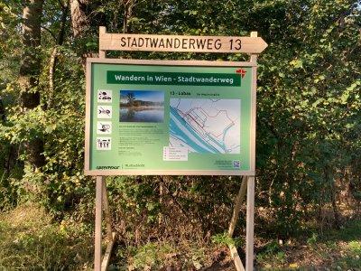 """Stadtwanderweg 13: Greenpeace eröffnet in der Lobau den Wanderweg """"ins Unglück"""""""