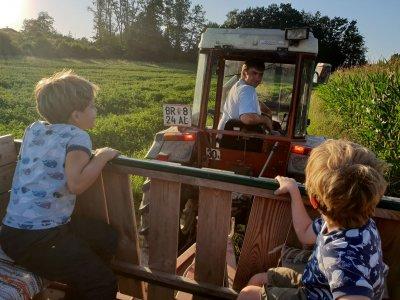 Neun Tipps für deinen unvergesslichen Familienurlaub im Entdeckerviertel in Oberösterreich