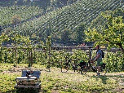 Die schönsten Radtouren in der Steiermark