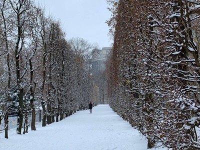 9 Spaziergänge durch Wien mit kulinarischen Highlights