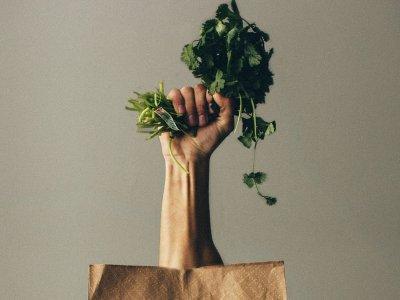 Green Vienna: Coole Tipps für mehr Nachhaltigkeit