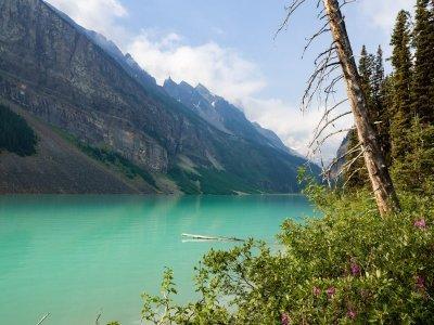 Roadtrip durch Alberta: 2 Wochen Abenteuer und Natur pur