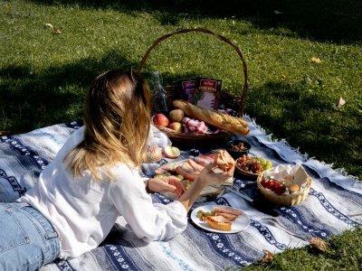 Die schönsten Plätze für ein herbstliches Picknick in Österreich
