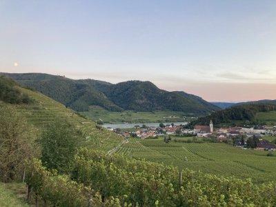 Wanderbare Weinstraßen in Österreich