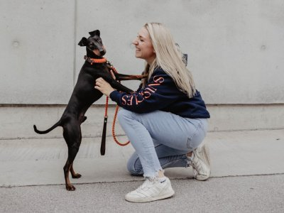 Österreichische Shops, die dich mit ausgefallenen Hunde-Accessoires versorgen