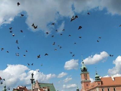 Warschau Reisetipps – Eine Städtereise in Polens Hauptstadt