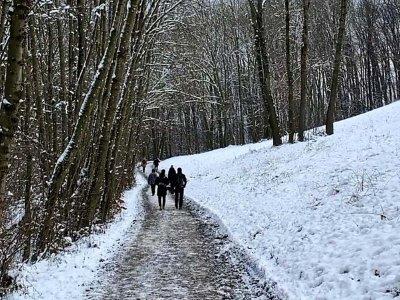 Wo ihr in und rund um Wien Schnee findet