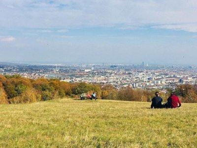 Die schönsten Herbstspaziergänge in Wien – Teil 2