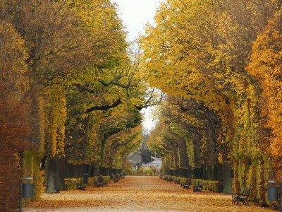 8 Dinge, die ihr in den Herbstferien in Wien machen solltet