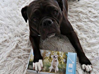 PEZZ CHECK – Der Urintest für den Hund