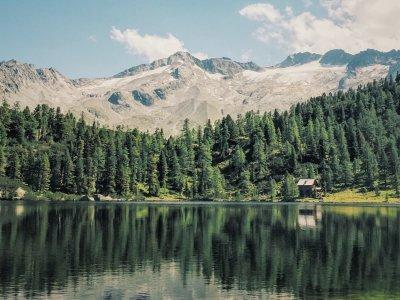 Traumhafte Seen in Österreich, die wir lieben