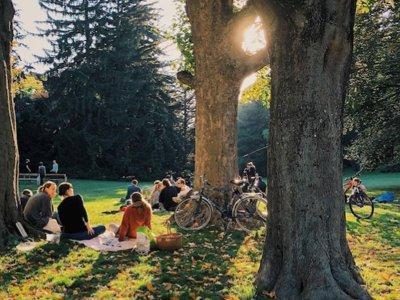Die schönsten Ausflugsziele für den Herbst in Wien